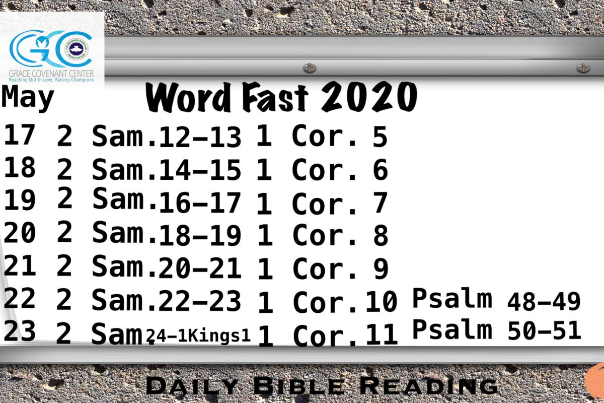 Word Fast 2020
