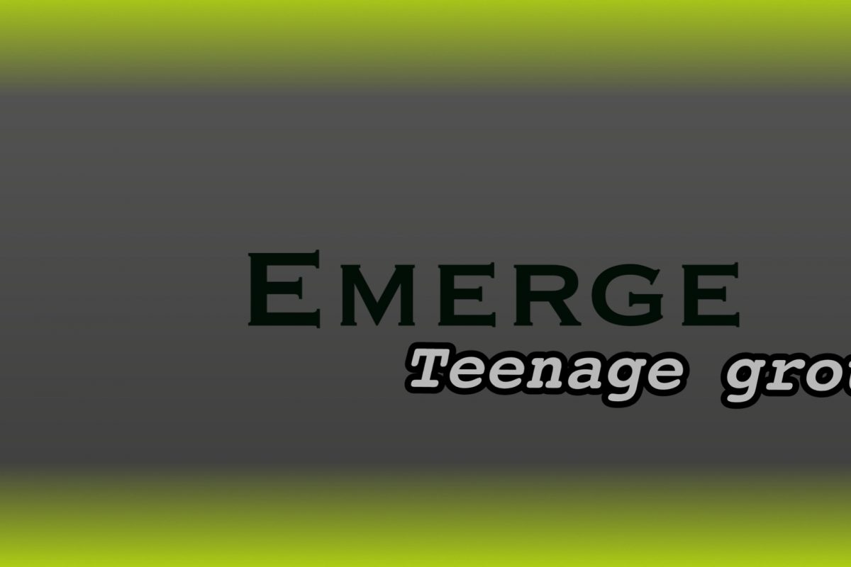 Emerge Group